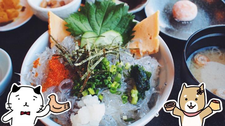 スイーツ食べ歩きに絶品しらす丼、可愛いカフェも♪ 週末よくばり鎌倉さんぽ